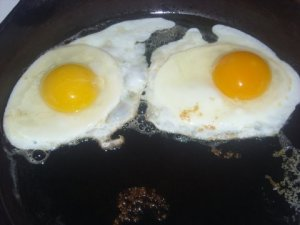 On the right, a Polyface egg...