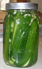 "fermented cucumbers, aka ""pickles"""